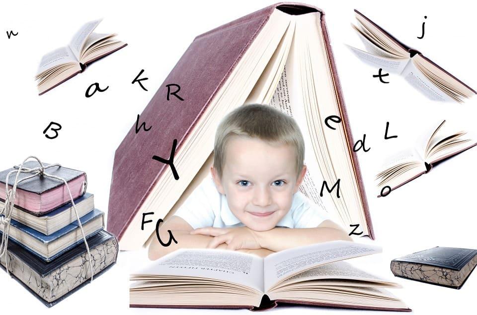 Comprendre l'intelligence (huit sortes, cinq facteurs, dix principes, cinq besoins)